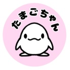 たまごちゃん ( shori )