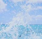 Aloha and co. ( ALOHACOMPANY )