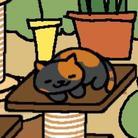 まささ(猫派) ( masasa814 )