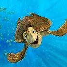 ウミガメのクラッシュ ( seaturtlecrash )