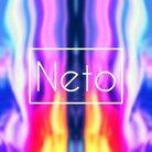 Neto ( NETO )