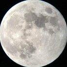 Moon ( tanpopo_kawaiii )