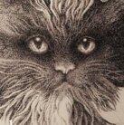 黒猫†フランベルジュのお店