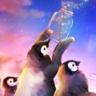 えっへんウサギのペンギン ( ehhen_usagi )