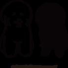 ONUKI COFFEE ROASTERY ( ONUKICOFFEE )