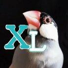 🐦🦆XL文鳥 ( XLbunchou )