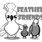 フェザーフレンズ ( featherfriends )