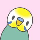 ぴっぴの巣♪ *セキセイインコ* ( pippi_pop )