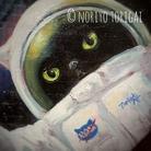 Noir_universecat