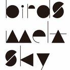 birds melt sky