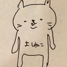よしねこねこ ( yoshineco )