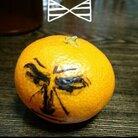 青切符 ( omochanokan )