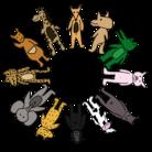 animal studio ( Doubutsuyasan )