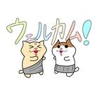 さらちゃんすとあ ( sarachan_store )