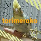 とりめろこ ( torimerock )